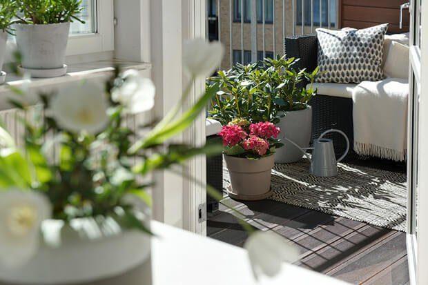 Decoracion exteriores plantas macetas jardineras y tiestos Dimensi-on