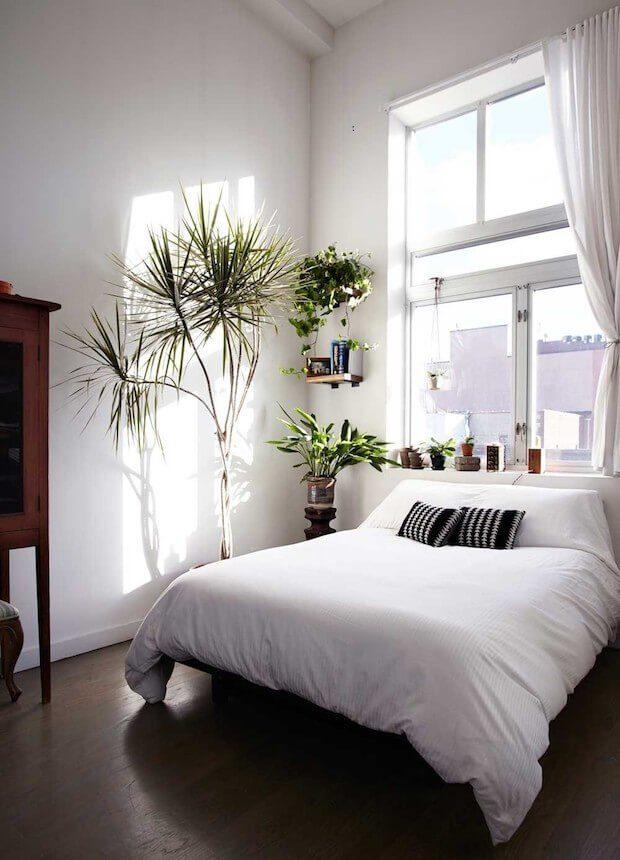 Cabeceros de cama bajo ventanas