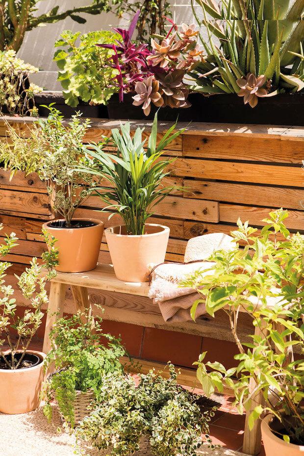 Decorar con plantas en la vuelta a casa tras las vacaciones ayuda a retomar nuestra rutina