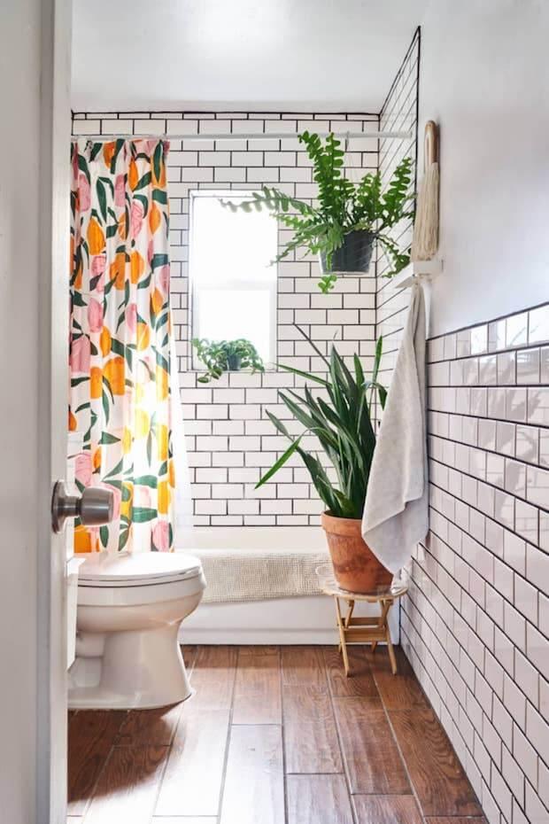 Decoración con plantas, ensencial en la decoración millennial de viviendas
