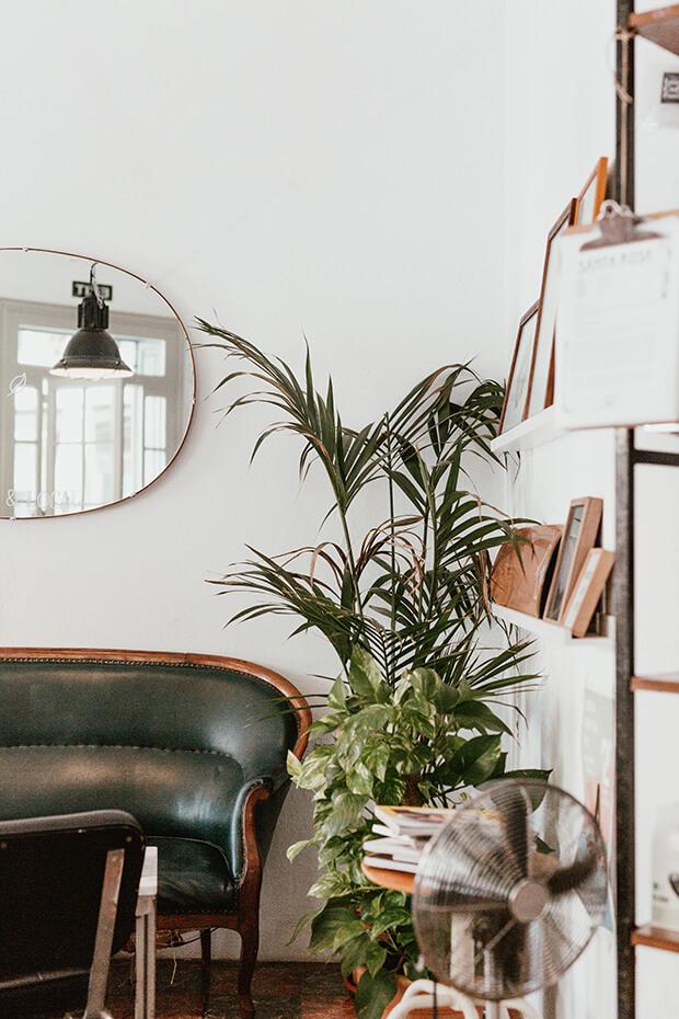 Consejos de decoración barata para viviendas
